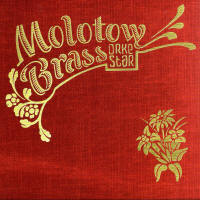 Debut cd by Molotow Brass Orkestar out now